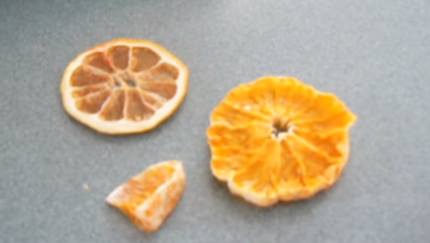 Orange Chips dehydrator