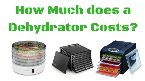 how much does a dehydrator cost