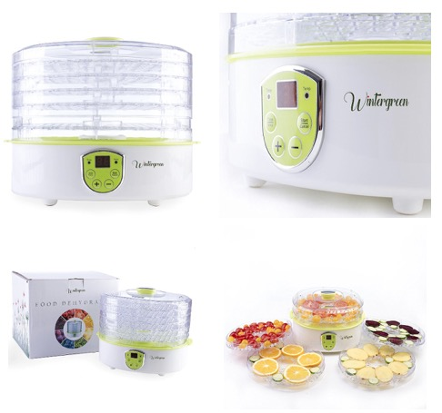 Food Dehydrator by Wintergreen BPA Free Small Food Dryer for Making Beef Jerky Dry Fruit Herbs Vegetable and Camping Dish