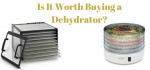 Is It Worth Buying a Dehydrator