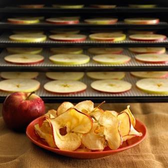 Susuz Elmalar Taze Elmalara Karşı