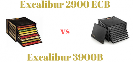 Excalibur 2900 ECB VS Excalibur 3900B