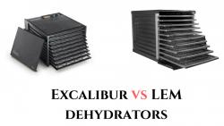 LEM Dehydrator VS Excalibur Dehydrator