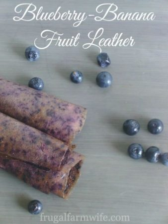 Recipe 52: Blueberry Banana Fruit Leather