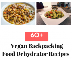 Vegan Backpacking Food Dehydrator Recipes