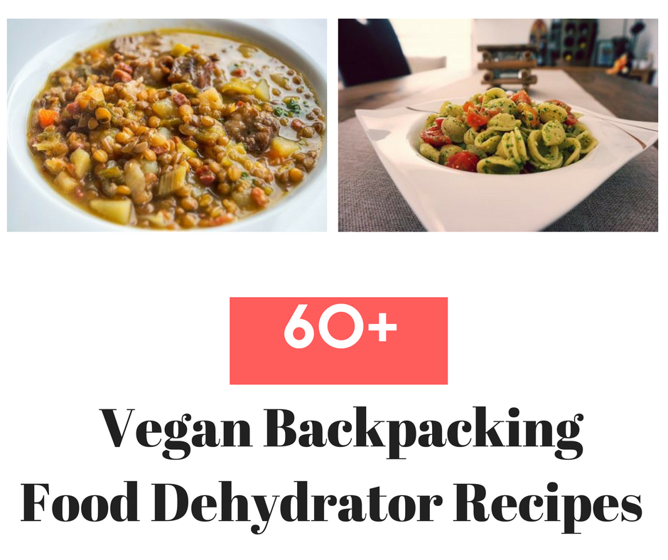 Food Dehydrator Recipes Uk