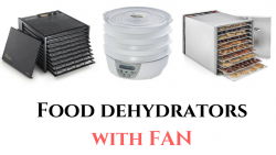 best food dehydrator with fan