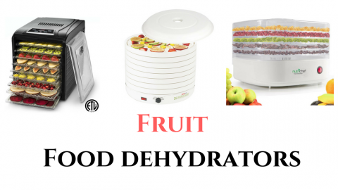 best fruit dehydrators
