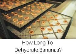 how long to dehydrate bananas