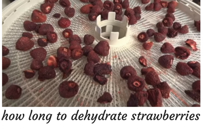 how long to dehydrate strawberries