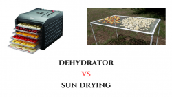 Dehydrator vs Sun Drying