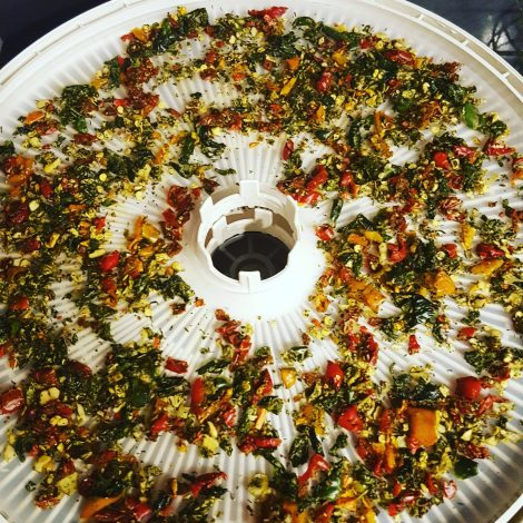 bell peppers in dehydrator tray