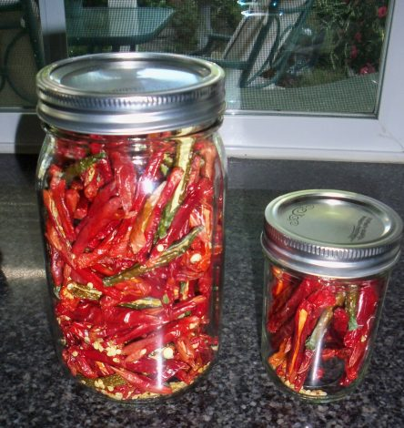 store dehydrated bell peppers in airtight container