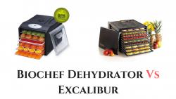 Biochef Dehydrator Vs Excalibur