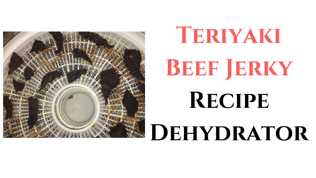 Teriyaki Beef Jerky Recipe Dehydrator