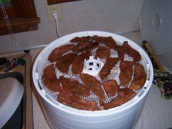 Raw jerky in Dehydrator